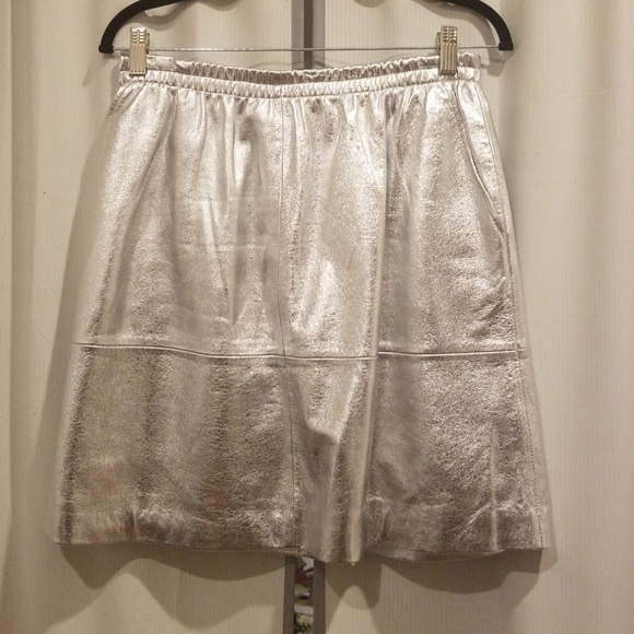 Thacker Dresses & Skirts - Silver leather A-line Thacker skirt XL (fits lk L)